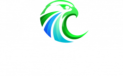 Falcon Focus Media Logo Wit